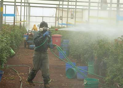 Health Symptoms Associated with Pesticides Exposure among